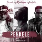 MOELOGO featuring DAVIDO & SARKODIE – PENKELE (REMIX)