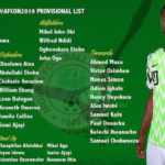 Can Naija soar high above the pyramids in Egypt…as Super Eagles coach Gernot Rohr names provisional list ahead of 2019 AFCON
