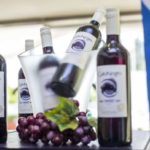 From GATO NEGRO to JP. CHENET to AGAVITA to NICHOLAS FEUILLATTE to BOMBAY SAPPHIRE to DEWAR'S to MOUNTAIN VIEW… See how the MARINA WINE FESTIVAL 2018 brought out in style, the seventh wonder of the world from Accra, Ghana